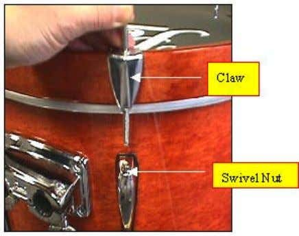 place the bass drum hoop onto the ring surrounding the head. Attach the claws onto the
