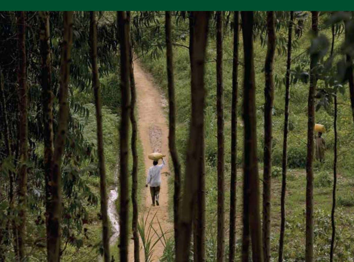 livelihoods of forests in household welfare and livelihoods FAO ISSN 0258-6150 FORESTRY PAPER 179