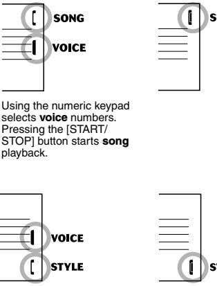 Using the numeric keypad selects voice numbers. Pressing the [START/ STOP] button starts song playback.