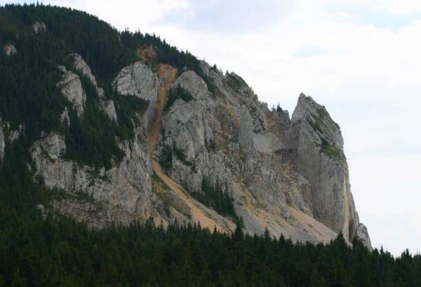 natural heritage of the park and expanding its boundaries Bicaz Gorges National Park, Hasmas (PNCB-H) was