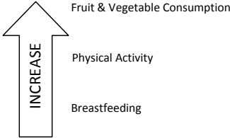 Fruit & Vegetable Consumption Physical Activity Breastfeeding INCREASE