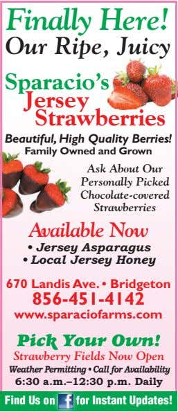 Finally Here! Our Ripe, Juicy Sparacio's Jersey Strawberries Beautiful, High Quality Berries! Family Owned and