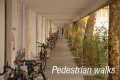 Pedestrian walks