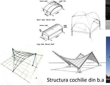 Structura cochilie din b.a