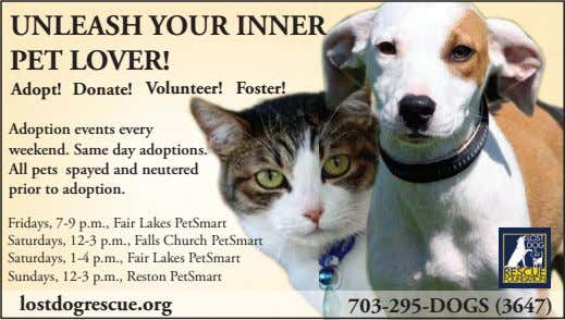 UNLEASH YOUR INNER PET LOVER! Adopt! Donate! Volunteer! Foster! Adoption events every weekend. Same day