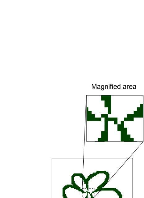 Magnified area