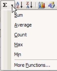 Functions from the drop-down menu (figure on the right). To use Insert Function , click the