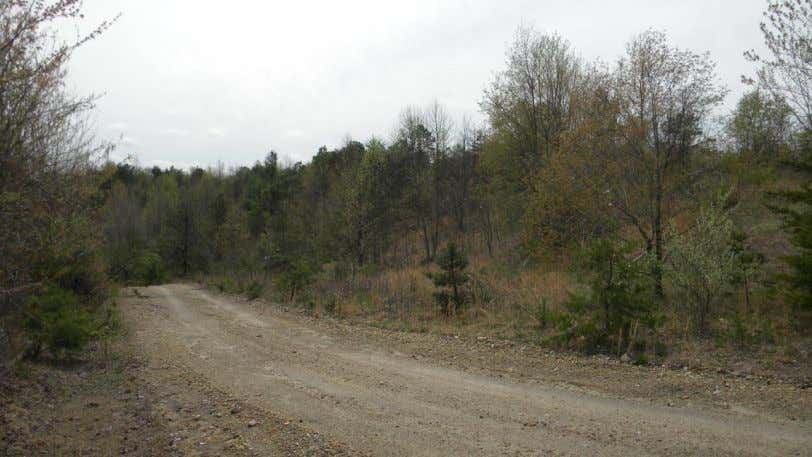 Appendix B - Site Photos (Access roads present throughout the site) (Large sections of ridge-top land