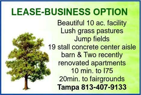 LEASE-BUSINESS OPTION Beautiful 10 ac. facility Lush grass pastures Jump fields 19 stall concrete center