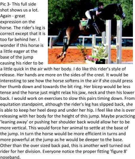 Jumping Clinic with Edd Lookingbill For 20 years Edd Lookingbill has operated a successful show and