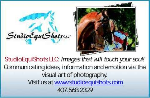 StudioEquiShots LLC: Images that will touch your soul! Communicating ideas, information and emotion via the