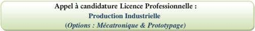 Appel à candidature Licence Professionnelle : Production Industrielle (Options : Mécatronique & Prototypage)