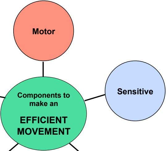 Motor Sensitive Components to make an EFFICIENT MOVEMENT