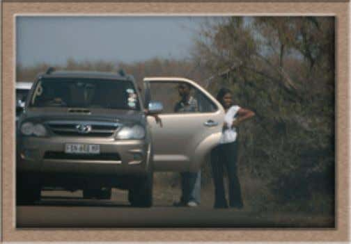 Kruger Krazies' Claim to Shame These photos of transgressors of Park rules are published in an