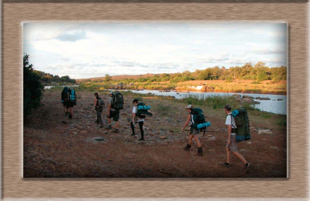 9111. Photos: Archive: Olifants River Backpack Train in KNP. Andrew Des- met kruger park times -