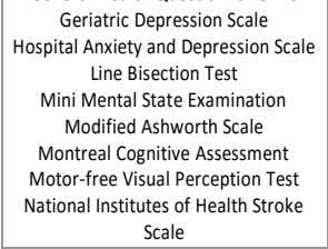 Ashworth Scale Montreal Cognitive Assessment Motor-free Visual Perception Test National Institutes of Health Stroke Scale