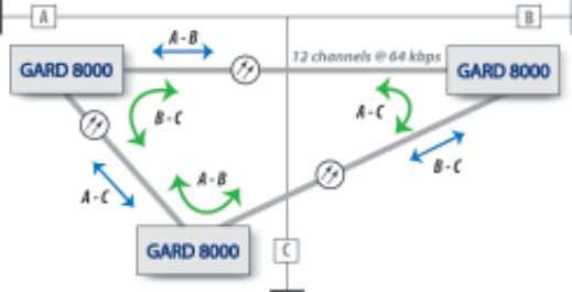 by use of the pass-through ability of GARD 8000. Figure 9. Three terminal application RFL Electronics