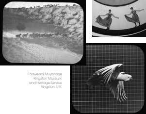 Eadweard Muybridge Kingston Museum and Heritage Service Kingston, U.K.