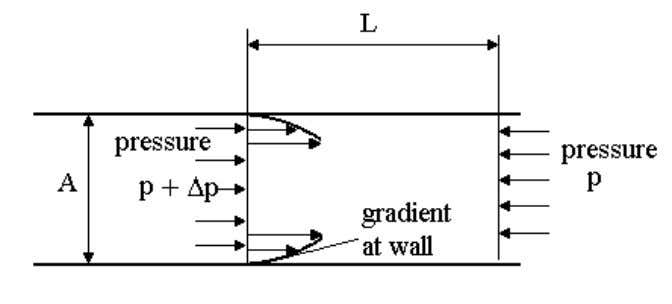 stress in the layer of fluid next to the wall of the pipe. The shear stress