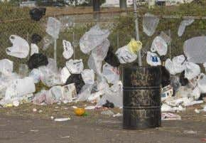Plastic Bag Bans: Analysis of Economic and Environmental Impacts October 2013 Updated: October 23, 2013