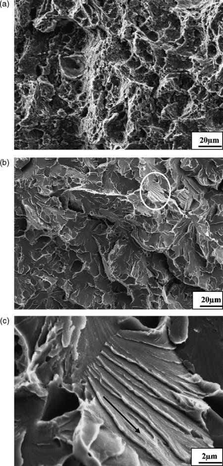 Science and Engineering A 483–484 (2008) 325–328 Fig. 2. SEM images of (a) dimples on the