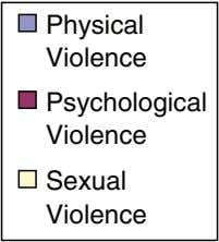 Physical Violence Psychological Violence Sexual Violence