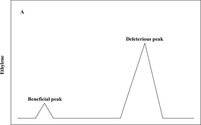 A Deleterious peak Beneficial peak Ethylene