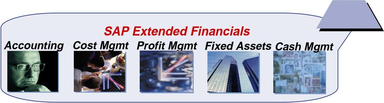 SAP Extended Financials Accounting Cost Mgmt Profit Mgmt Fixed Assets Cash Mgmt