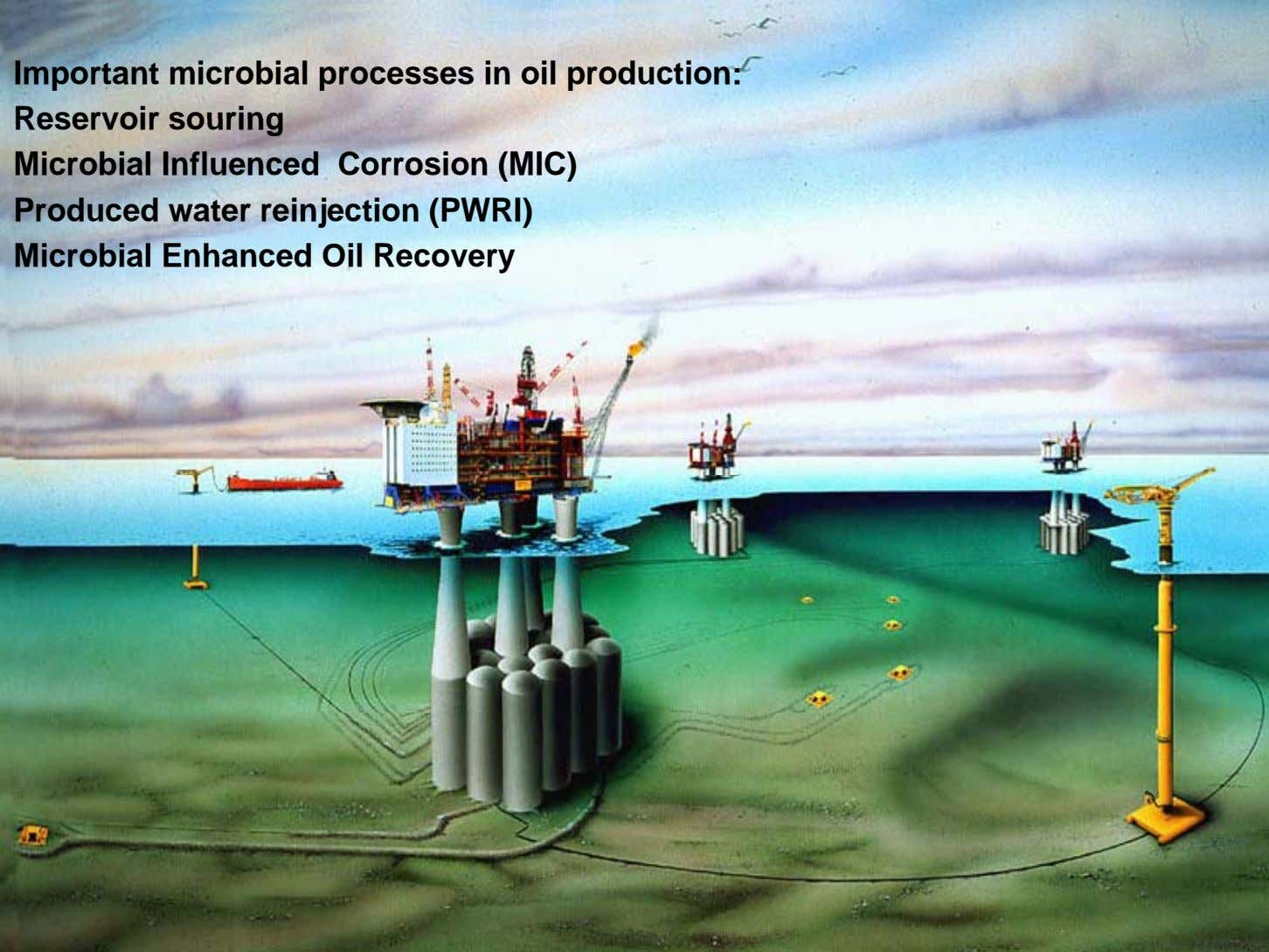 Important microbial processes in oil production: Reservoir souring Microbial Influenced Corrosion (MIC) Produced water