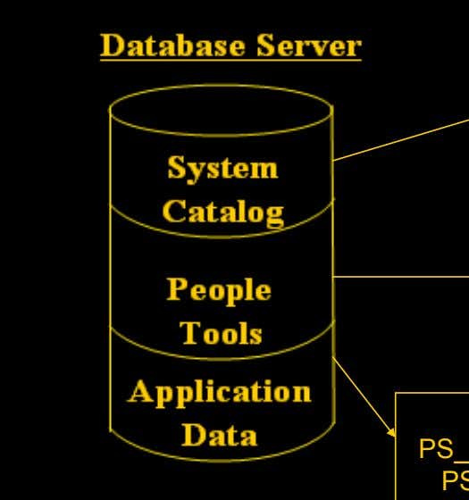 Relational Database, Metadata and PeopleSoft SYSOBJECTS SYSCOLUMNS PSRECDEFN PSPNLDEFN PS_PSU_STUDENT_TBL