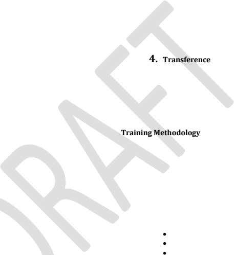 4. Transference Training Methodology   