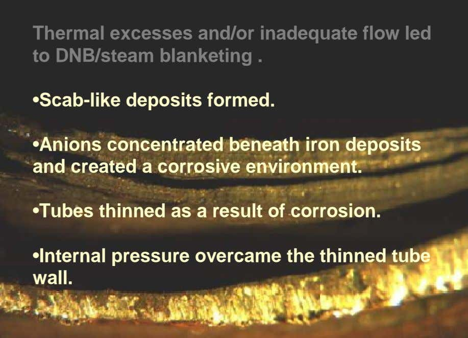Thermal excesses and/or inadequate flow led to DNB/steam blanketing . •Scab-like deposits formed. •Anions