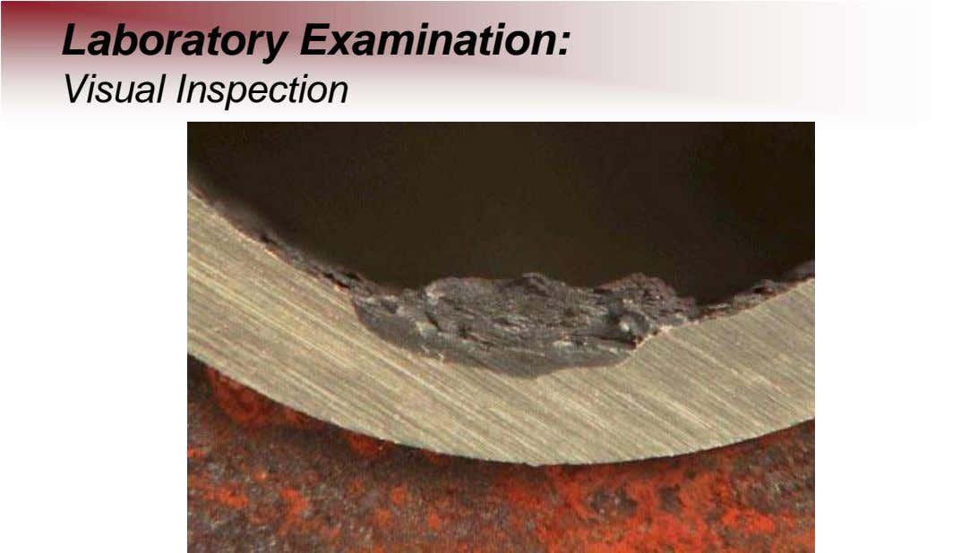 Laboratory Examination: Visual Inspection