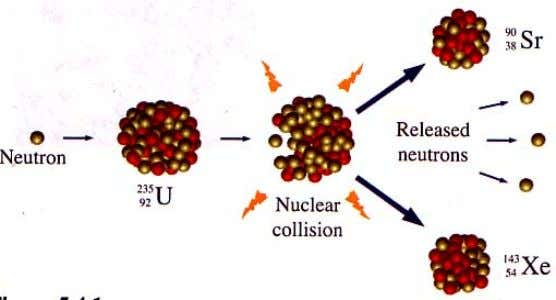 • A slow neutron hitting a uranium-235 nucleus, causing it to split producing strontium-90 ,