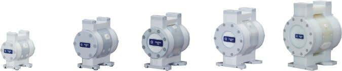 Model Overview ChemSafe Air-Operated Double Diaphragm Pumps Model ChemSafe ™ 205 ChemSafe 307 ChemSafe 515