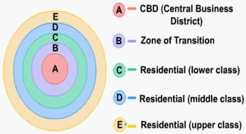 residential circles around a Central Business District (CBD). The theory is based on assumptions that included