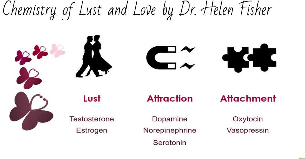 Chemistry of Lust and Love by Dr. Helen Fisher