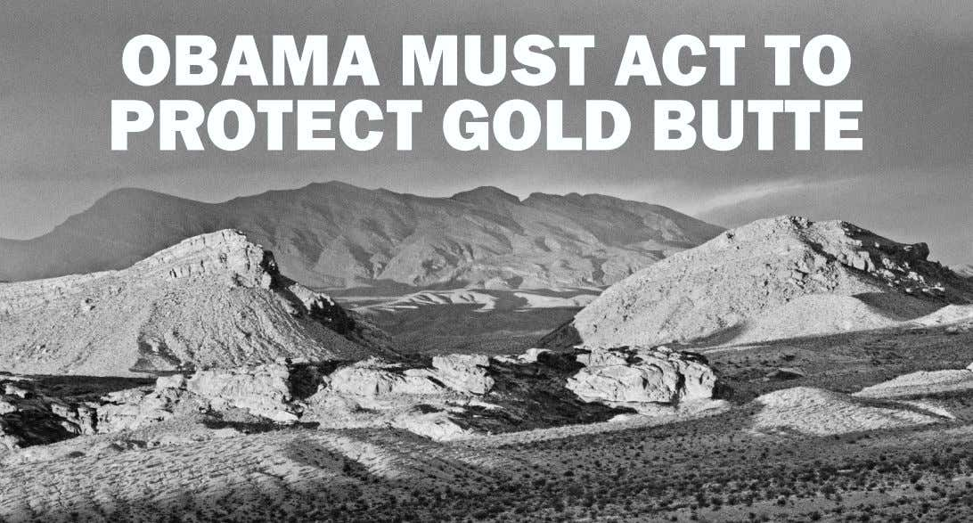 OBAMA MUST ACT TO PROTECT GOLD BUTTE