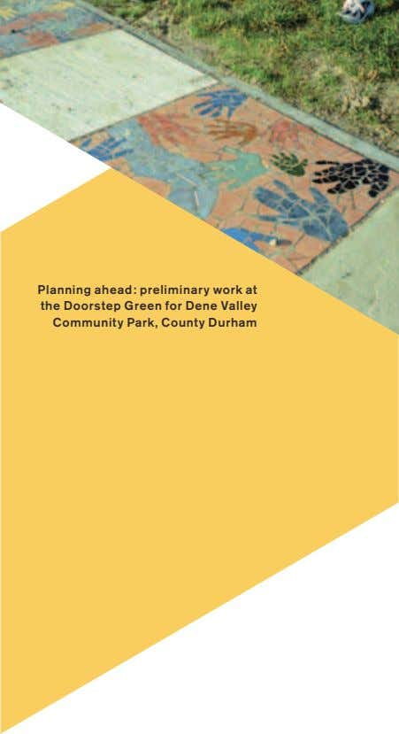 Planning ahead: preliminary work at the Doorstep Green for Dene Valley Community Park, County Durham