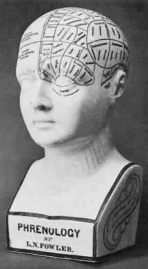 through platinum electrodes to the anterior regions of Fig. 2.17 Phrenology head (Fowler); each region of