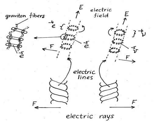 FIGURE 9 . Structure of the electric field FIGURE 10 . Structure of the magnetic