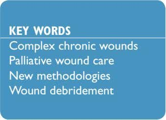 KEY WORDS Complex chronic wounds Palliative wound care New methodologies Wound debridement