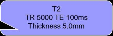 T2 TR 5000 TE 100ms Thickness 5.0mm