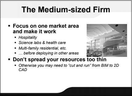 The Medium-sized Firm  Focus on one market area and make it work  Hospitality