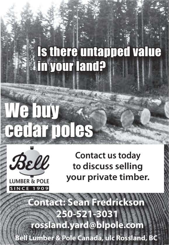 ZIPI Is there untapped value in your land? We buy cedar poles Contact us today