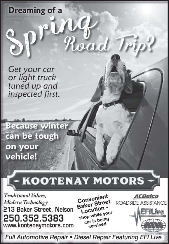 Dreaming of a Road Trip? Get your car or light truck tuned up and inspected