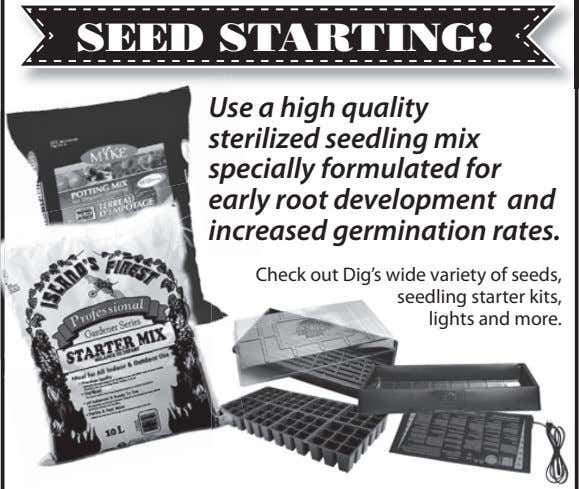 SEED STARTING! Use a high quality sterilized seedling mix specially formulated for early root development
