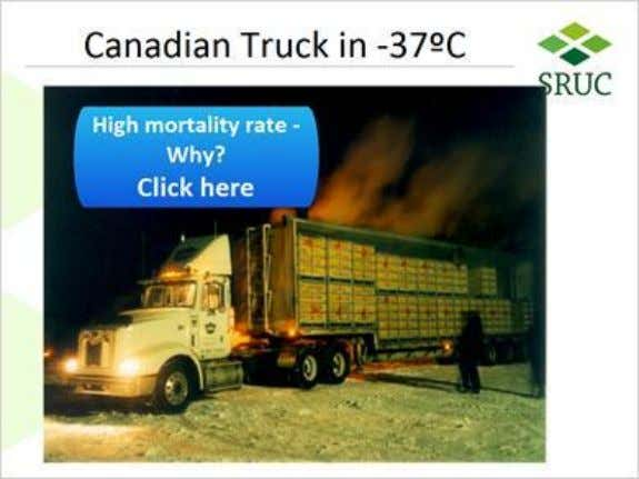 1.28 Canadian Truck in -37ºC Canadian truck (Slide Layer) Published by Articulate® Storyline www.articulate.com