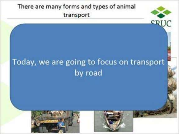 we can do 1.8 There are many forms and types of animal transport Published by Articulate®
