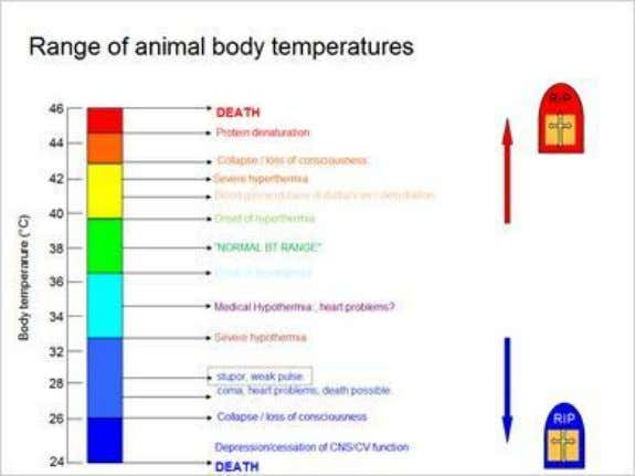 1.11 Range of animal body temperatures 1.12 Poultry (meat) production - 2009 Published by Articulate® Storyline